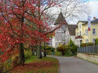 Der Herbst ist die Jahreszeit,in der die Natur die Seite umblättert 💕