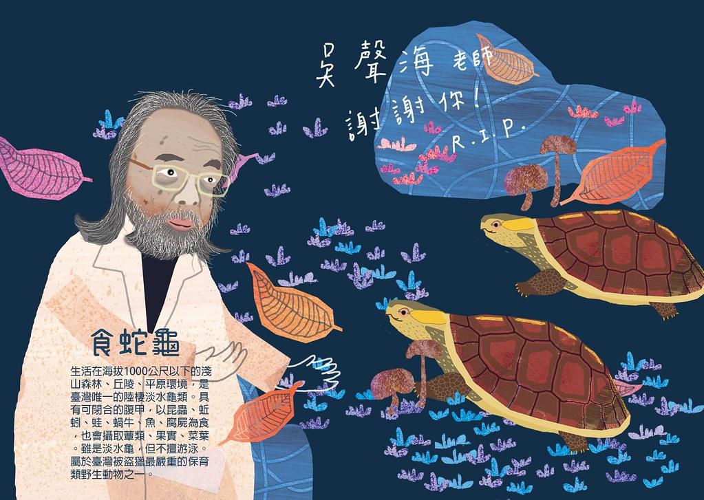 Chih繪本雖與吳聲海素未謀面,但因聽聞食蛇龜推廣保育的故事而感佩不已,知道他過世,畫出這幅作品來紀念他。圖片來源:Chih繪本