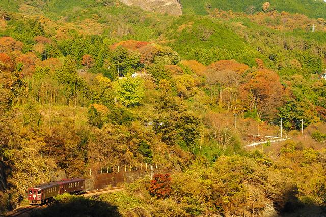 わたらせ渓谷鉄道 深まる秋