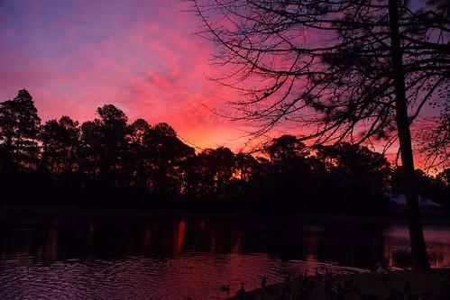 spectacularsunsetsandsunrises sunrise cloudsstormssunsetssunrises cravencounty lake fairfieldharbour northcarolina olympuspenepm2 olympus dawn daybreak