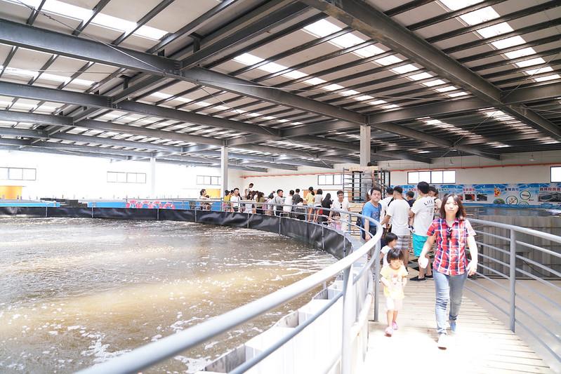 金車生技水產養殖研發中心 (36)
