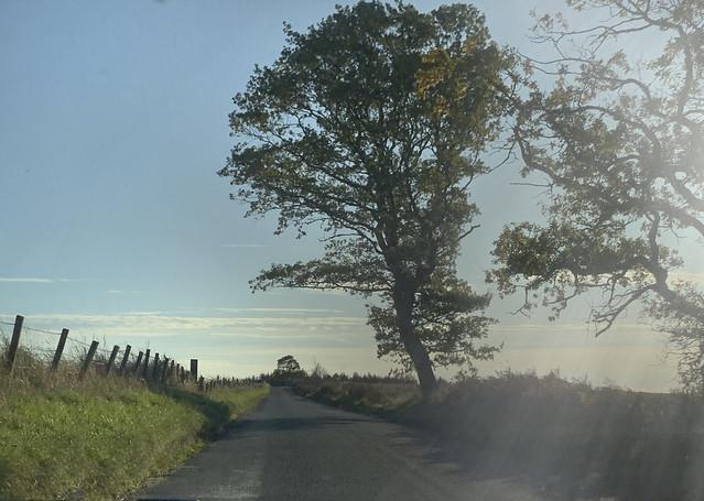 The Darley road