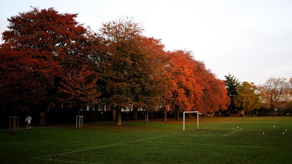 Markfield Park   Noel Treacy   Flickr