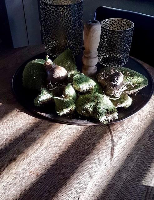schaal met mosballen eettafel