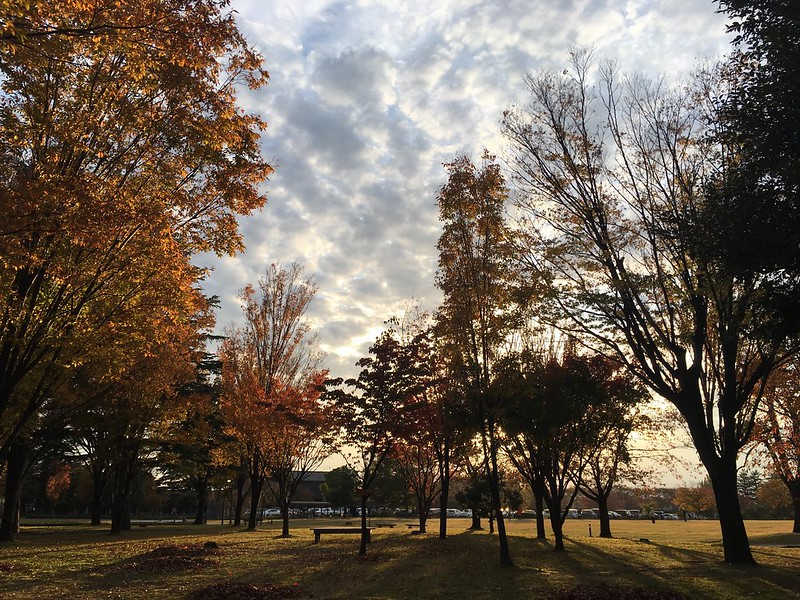 晩秋の金沢市民芸術村から