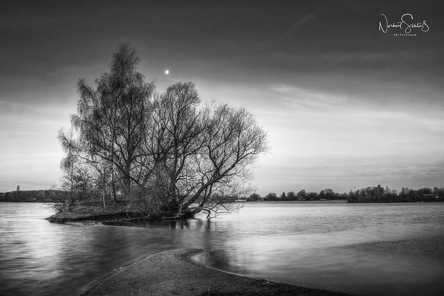 Wisseler See im Mondschein