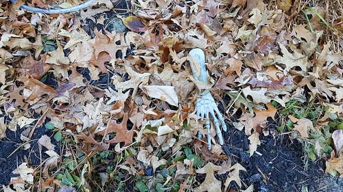 Halloween remnant