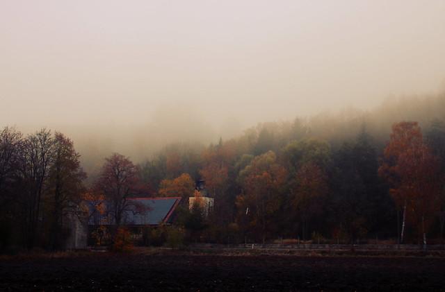 fog all day