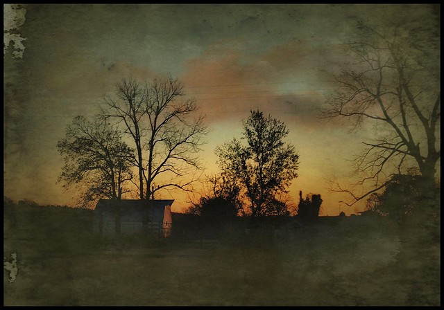 Evening glow....