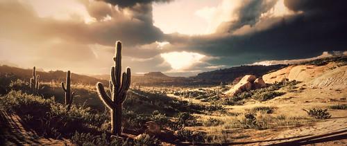 Desert Beauty   RDR2