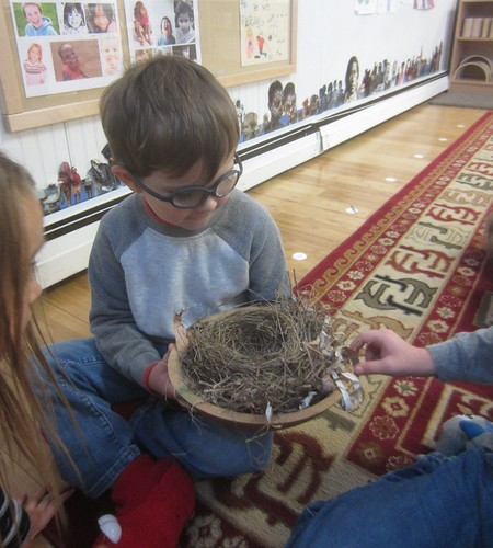 a nest made of straw, birch bark, and small sticks
