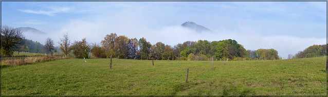 Ein Nebelbett für den Donnersberg