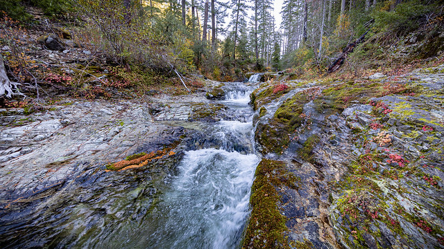 North Fork Silver Creek Wild & Scenic River