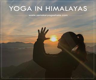 yoga-ttc-in-rishikesh