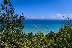 Bicolor Sea