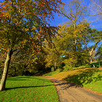 Green Avenham Park in Preston