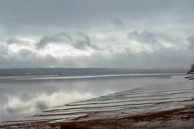 Moody Spring Day Along The Shubenacadie River (Low Tide)