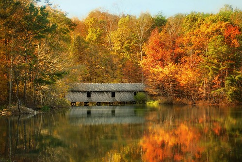nature outdoor alabama usa landscape autumn colorfull sony rx100 rx100iii bridge reflections water lake