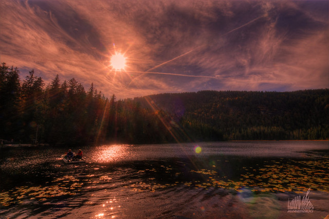 Great Lake Arber