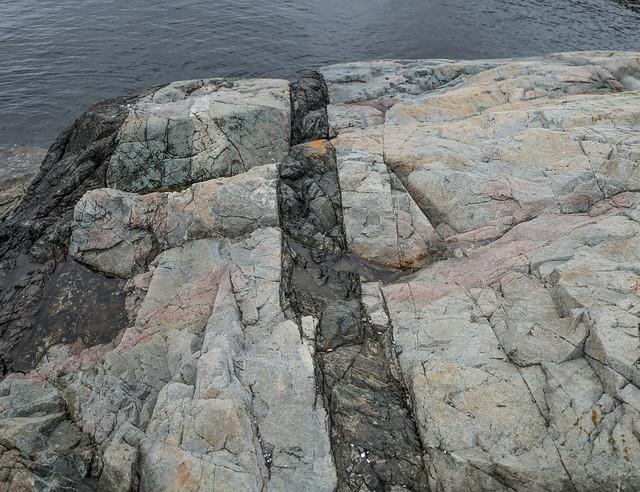 Black Igneous Dyke intrusion into Granodiorite (Granitic) Rock, Finlayson Point, Victoria, BC, Canada