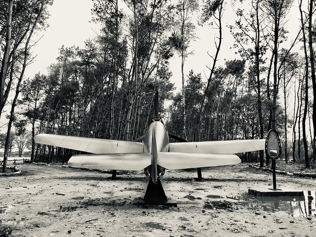 Plane in the forest
