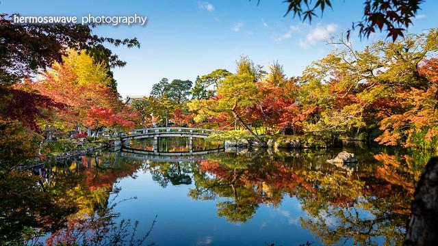 Autumn Reflection・秋の映る