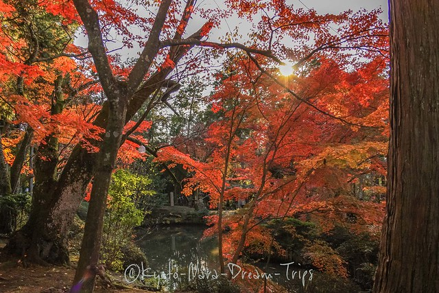 Benten-dō: One of the Oldest Shrines in Kyoto!