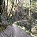 Tafoni Trail