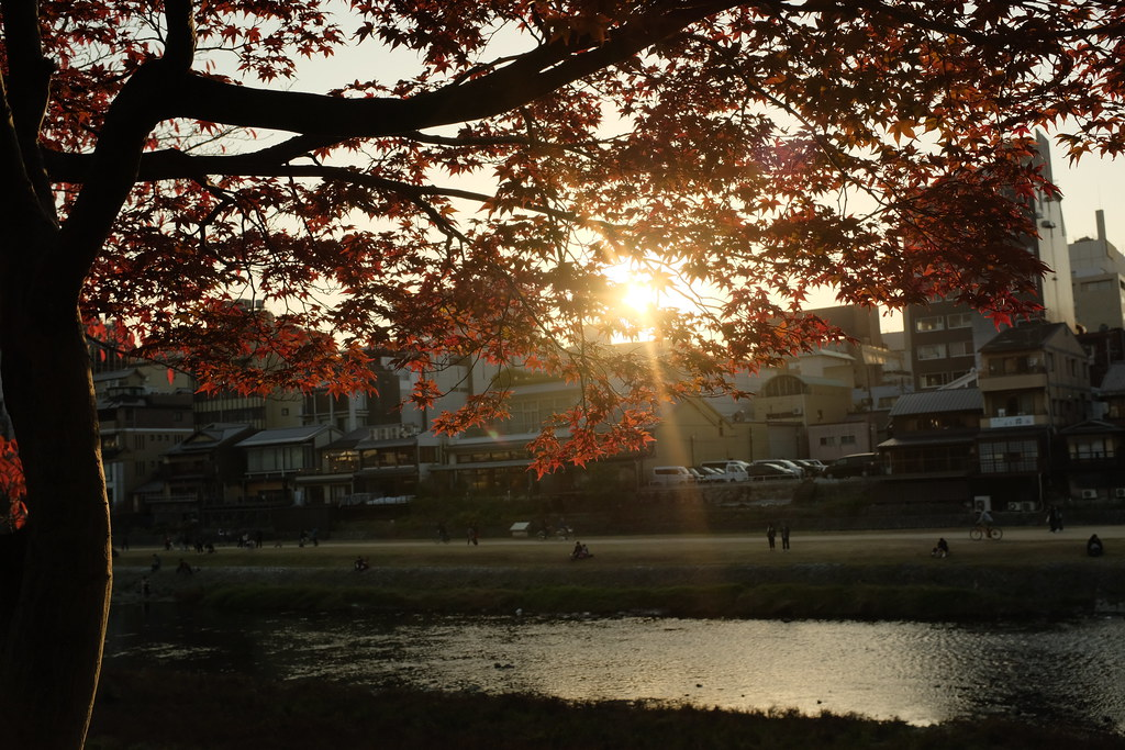 2019 Kyoto Autumn