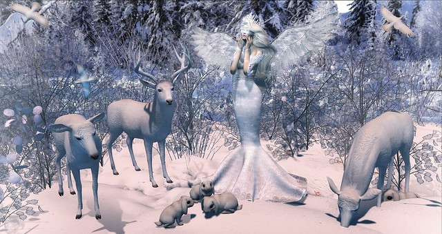 Please watch over all your precious animals, Lord, and keep them safe through this cold winter... Amen.