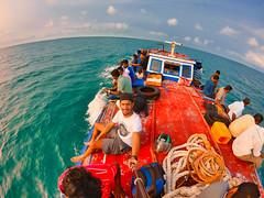 Neduntheevu - Delft Island - Sri Lanka