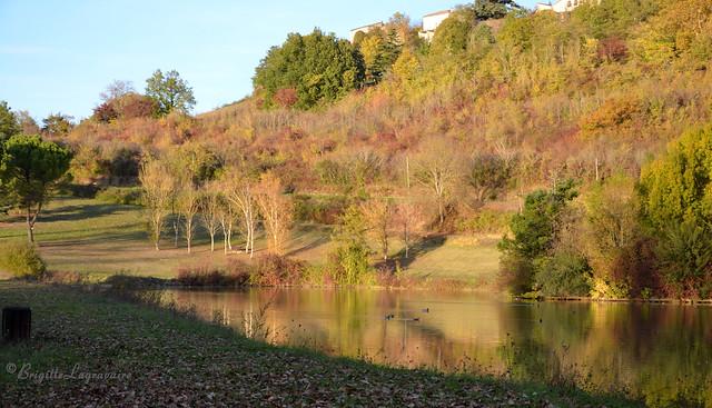 Eblouissement d'automne autour du lac