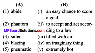 MP Board Class 9th General English The Spring Blossom Solutions Objective Type Questions 1