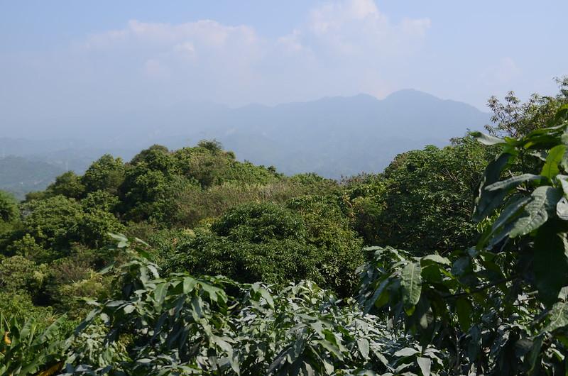虎頭山山頂展望 (2)