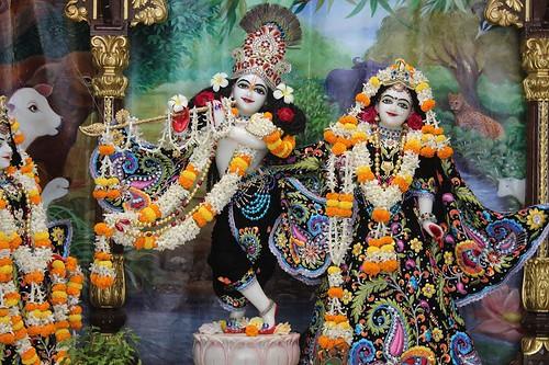 ISKCON Kanpur Deity Darshan 16 Nov 2019