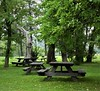 The leaves had started to fall, and the picnic tables were standing in line waiting for guests. They were inside at the cafe. I like fresh air so much better. It's at Alby by the way.