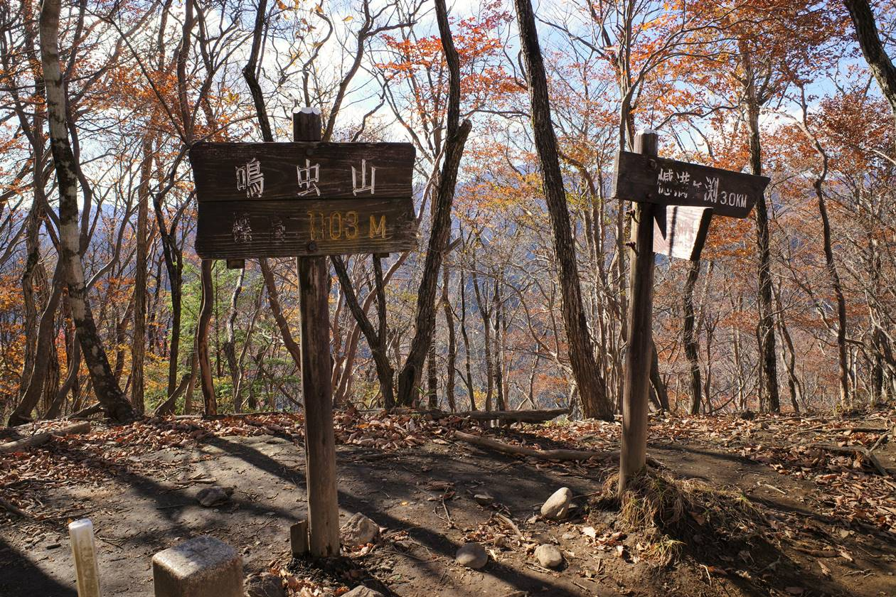 鳴虫山山頂の標識