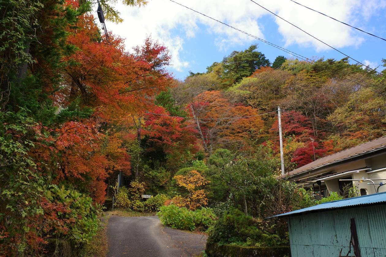 紅葉の鳴虫山登山口
