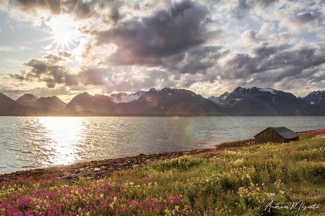 Seitikenttä - Lyngenfjord (Norway)