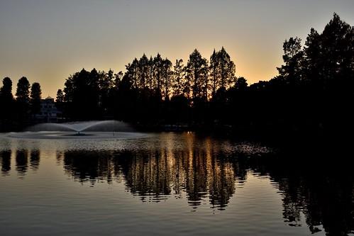 sunset goldenhour landscape nature lake water reflection besshonumapark 別所沼公園