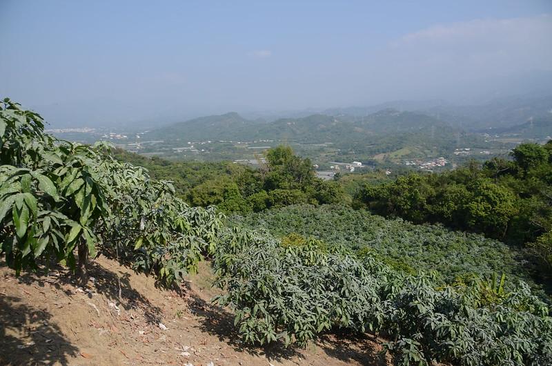 虎頭山山頂展望 (3)