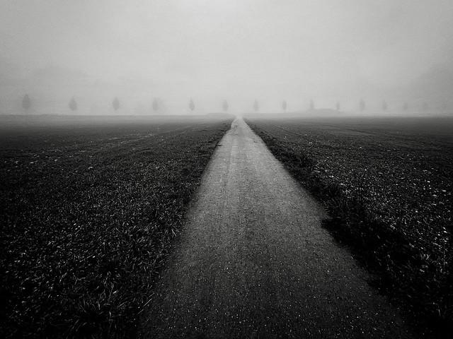 landscape - 0124