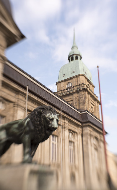 der Löwe & das Hessische Landesmuseum