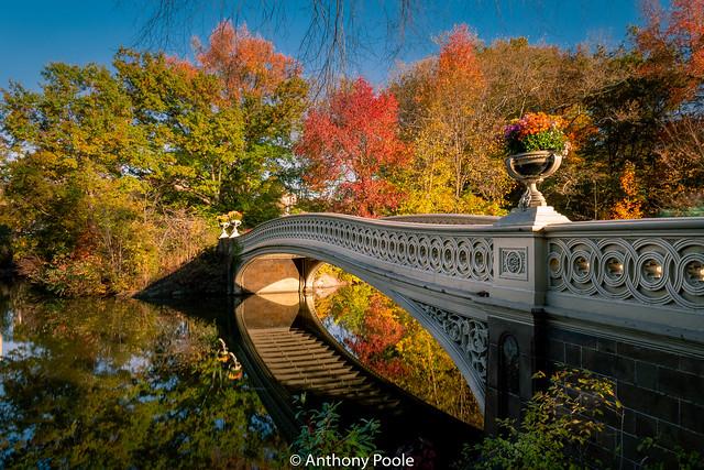 Central Park in Autumn 2019