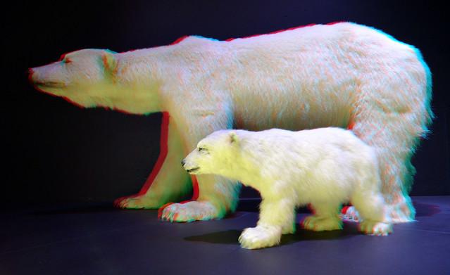 Naturalis Leiden 2019 3D