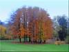 Laubach/Germany - Schlosspark
