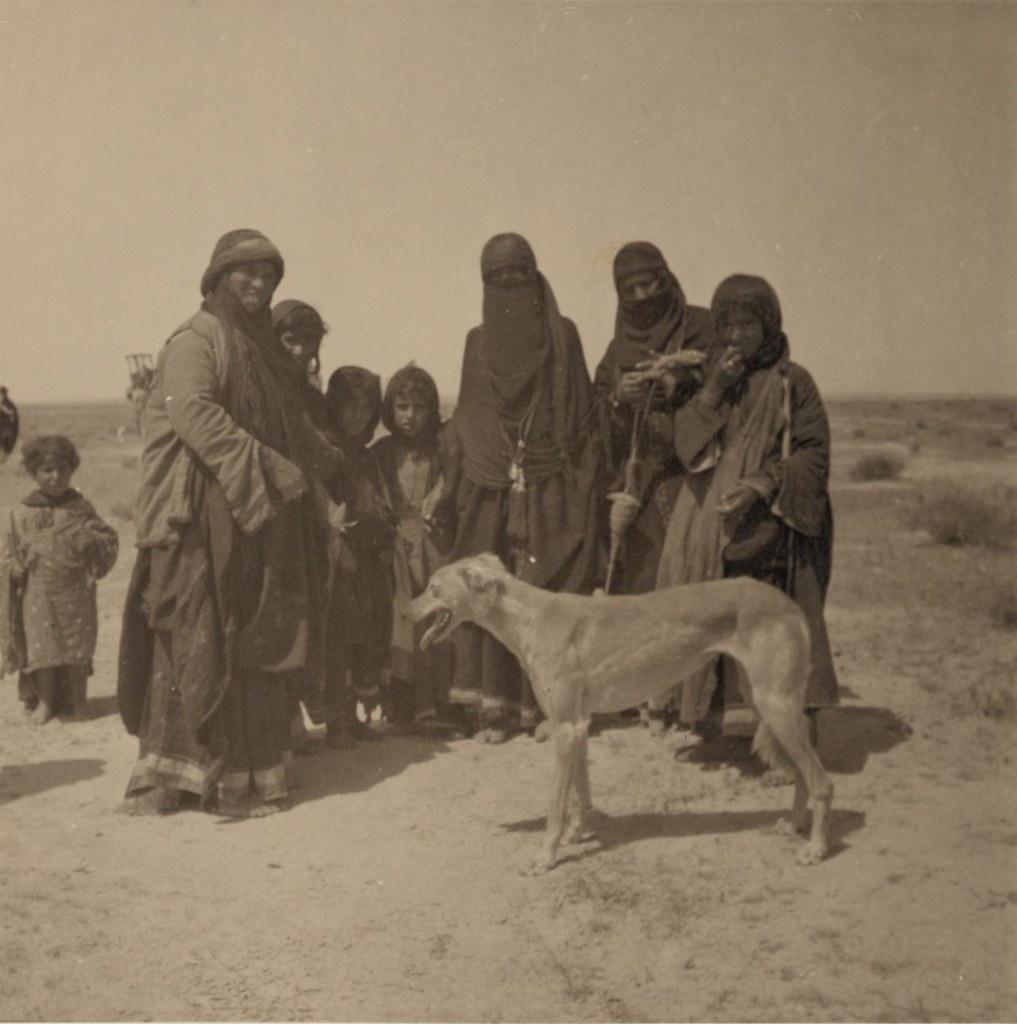 07. 27-30 апреля. Бедуинки и собака
