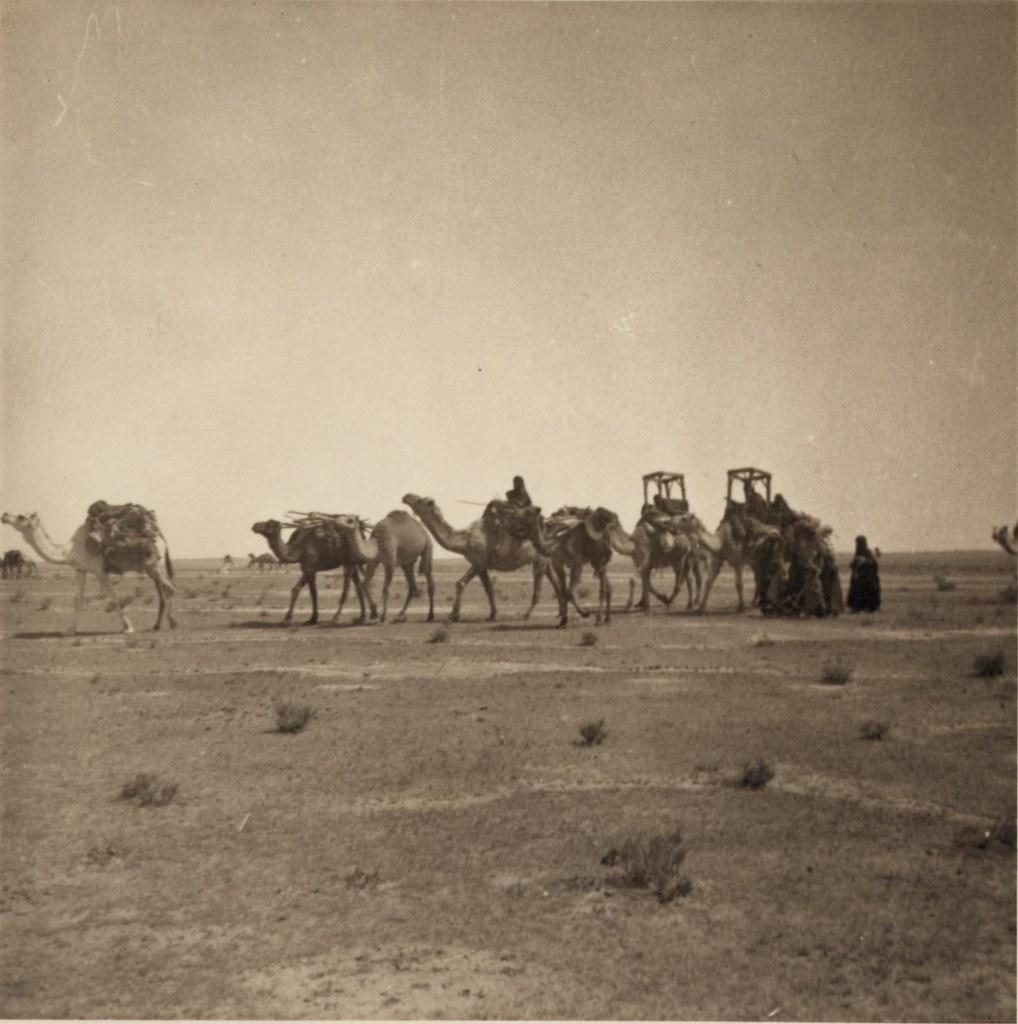 04. 27-30 апреля. Клан бедуинов в пути