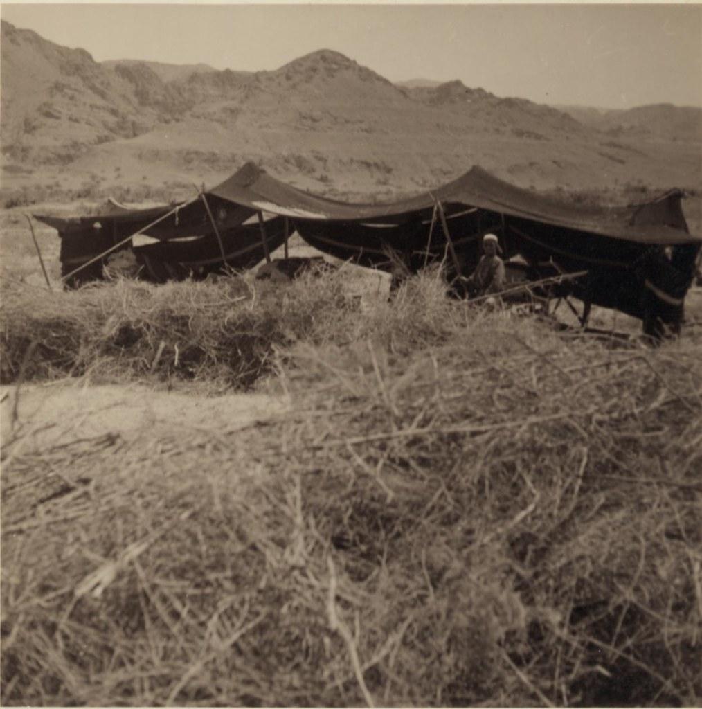 02. 27-30 апреля.  Цыганская палатка