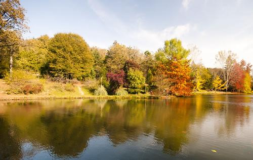 Sonbahar Yansımaları (Autumn Reflections)